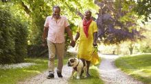 2 Top Dividend Stocks for Canadian Seniors Today