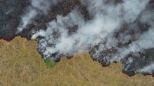 Países europeus alertam: desmatamento pode frear a compra de produtos brasileiros