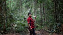 Quando o desmatamento transforma a Amazônia em barril de pólvora