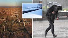 East coast cops a drenching but inland towns remain dry