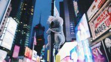 Llenan Nueva York de koalas para recaudar fondos por los incendios de Australia