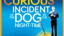 Celebrated Stage Productions 'The Curious Incident of the Dog in the Night-time' and 'Frankenstein' Added to National Theatre Live 2018 U.S. in-Cinema Slate