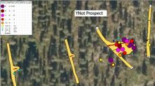 Aurion Makes New High Grade Surface Discovery at Risti