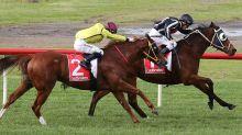 Jungle Edge sprints to Sandown victory