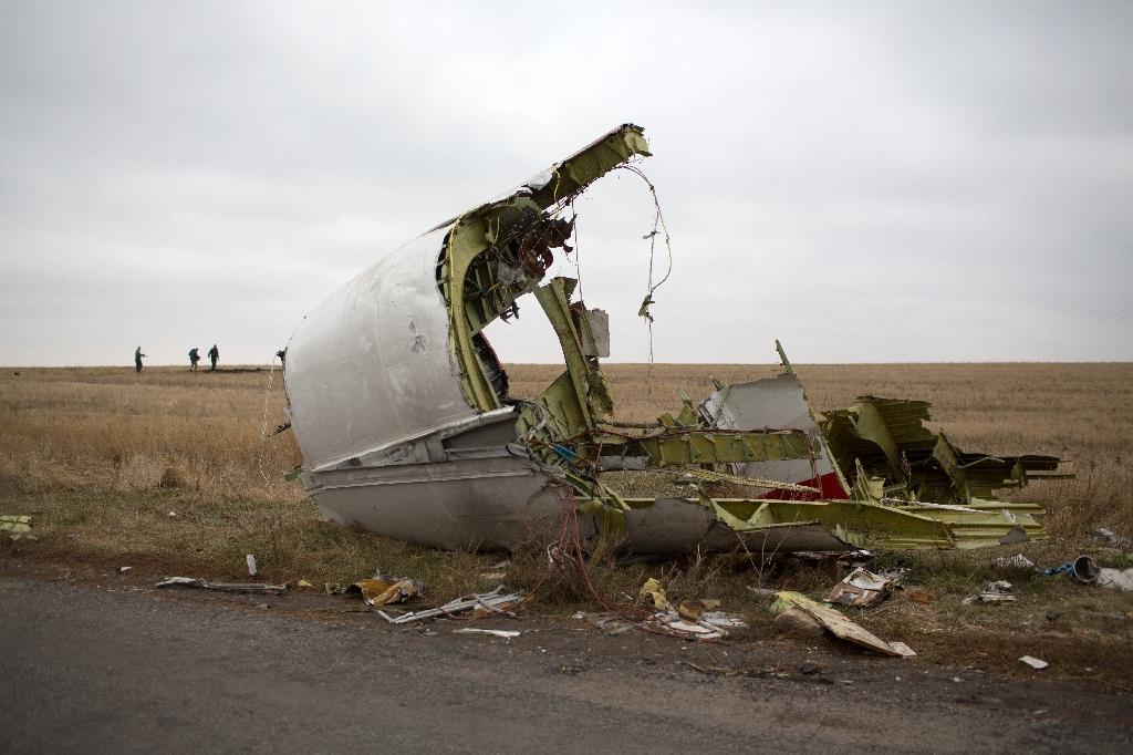 Malaysia Airlines flight MH17 crashed in July 2014 in the eastern Ukrainian region of Donetsk, killing 298 people (AFP Photo/Menahem Kahana)