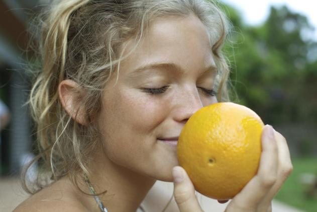 Crowdsourced research predicts what molecules smell like