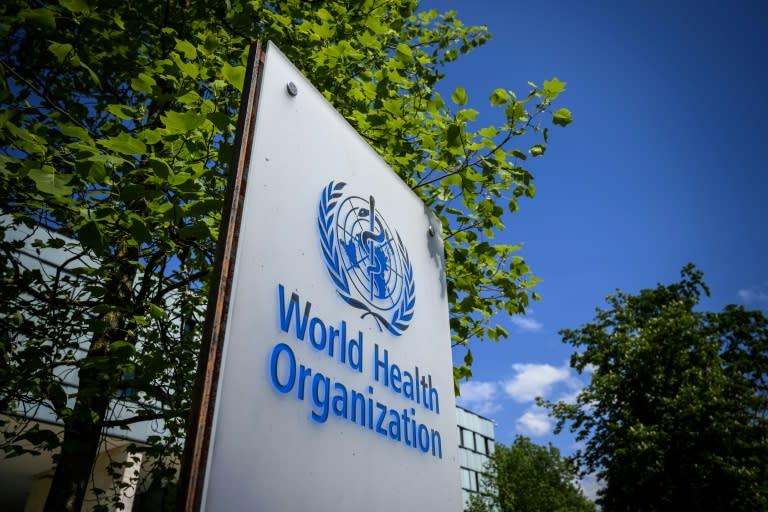 Trump has been sharply critical of the World Health Organization's pandemic response (AFP Photo/Fabrice COFFRINI)