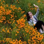 Rare California Super Bloom Made 'Unbearable' By Instagrammers