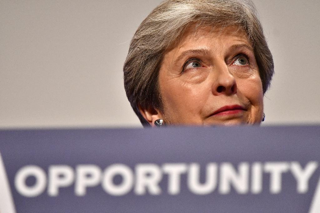 Britain's Prime Minister Theresa May has to reach a deal acceptable not only to Brussels but also to the members of her own Conservative party (AFP Photo/Ben STANSALL)