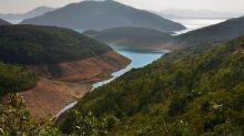Sun Hung Kai $2 Billion Farm Bet May Ease Hong Kong Housing Woes