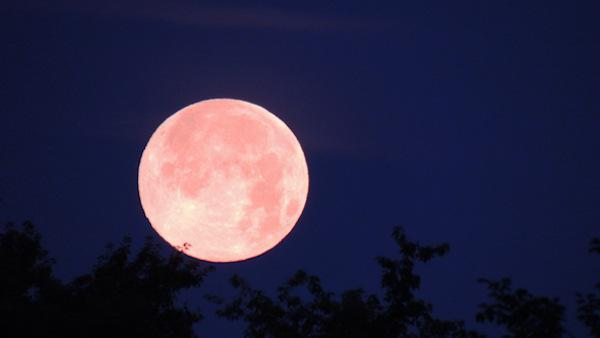 Supermoon lights up the sky