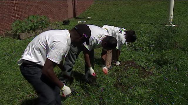 Community Cleans Up Neighborhood In Honor Of Nelson Mandela