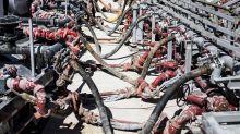 EQT to Buy Chevron Appalachian Shale Assets for $735 Million