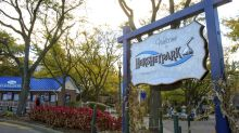 Police refute woman's account of reported child abduction at theme park: 'A case of confusion'