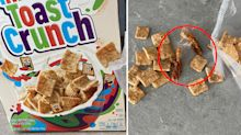 'I hope this isn't real': Man's disgusting find in box of cereal