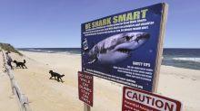 Spektakuläres Video: Hai schnappt Angler den Fang weg