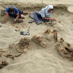 Evidence of world's biggest child sacrifice found in Peru