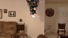 ¿Tienes gato o perro? 10 árboles de Navidad a prueba de traviesas mascotas