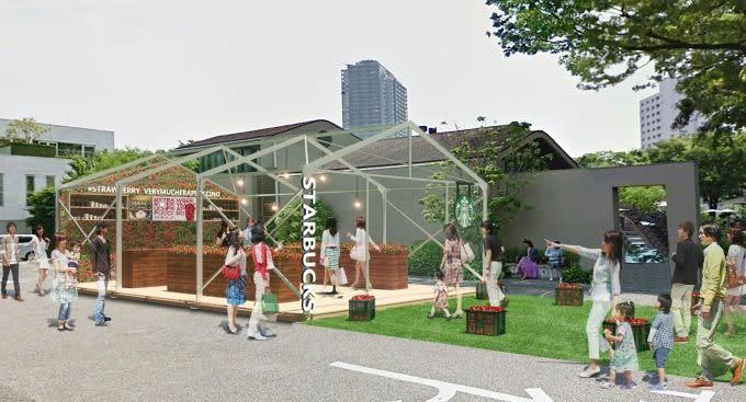 Starbucks coffee 草莓溫室快閃店