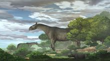 New fossils reveal one of the largest land mammals ever found