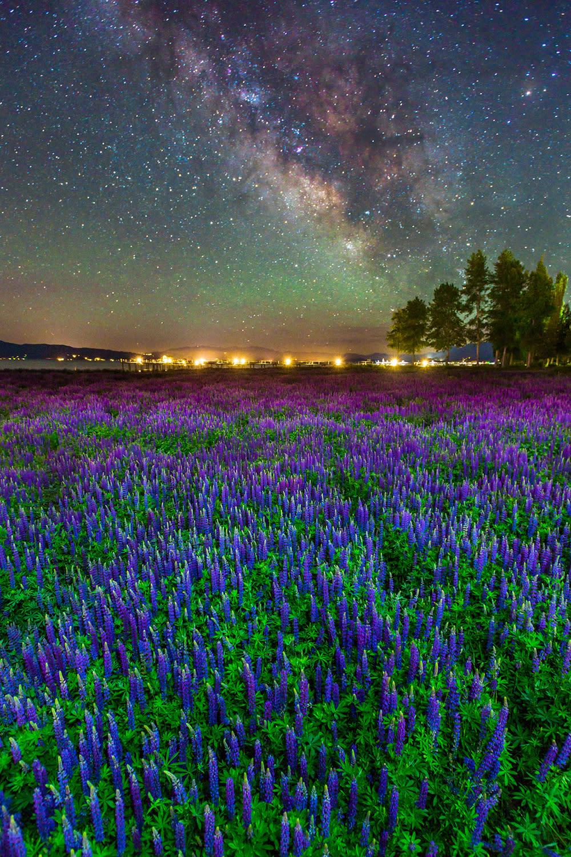 <p>Tahoe City, California. (Photo: Abe Blair/Caters News) </p>