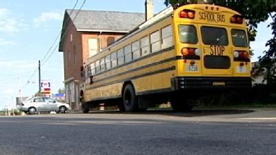 Sheriff: Pot Plants Seized At School Bus Driver's Home