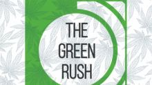Green Rush Podcast: Bruce Linton On Psychedelics, Listing On The NEO, And The Difference Between 'Going Public' And 'Being Public'