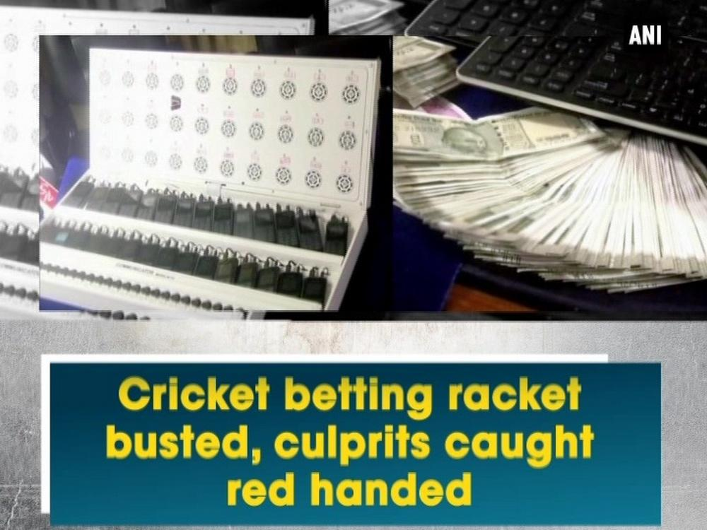 How to Read Cricket Odds