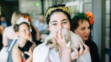 Couple Holds Wedding 'Kitten Hour' Instead Of Cocktail Hour