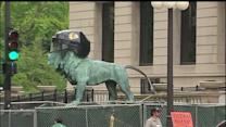 Art Institute of Chicago lions showing Blackhawks pride