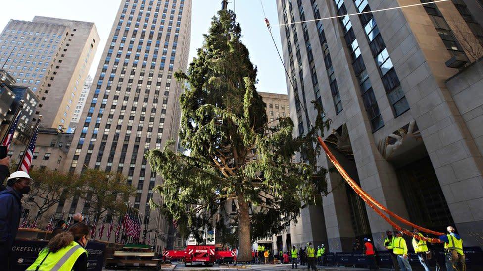 Rockefeller Center's famous Christmas tree 'on brand for 2020'