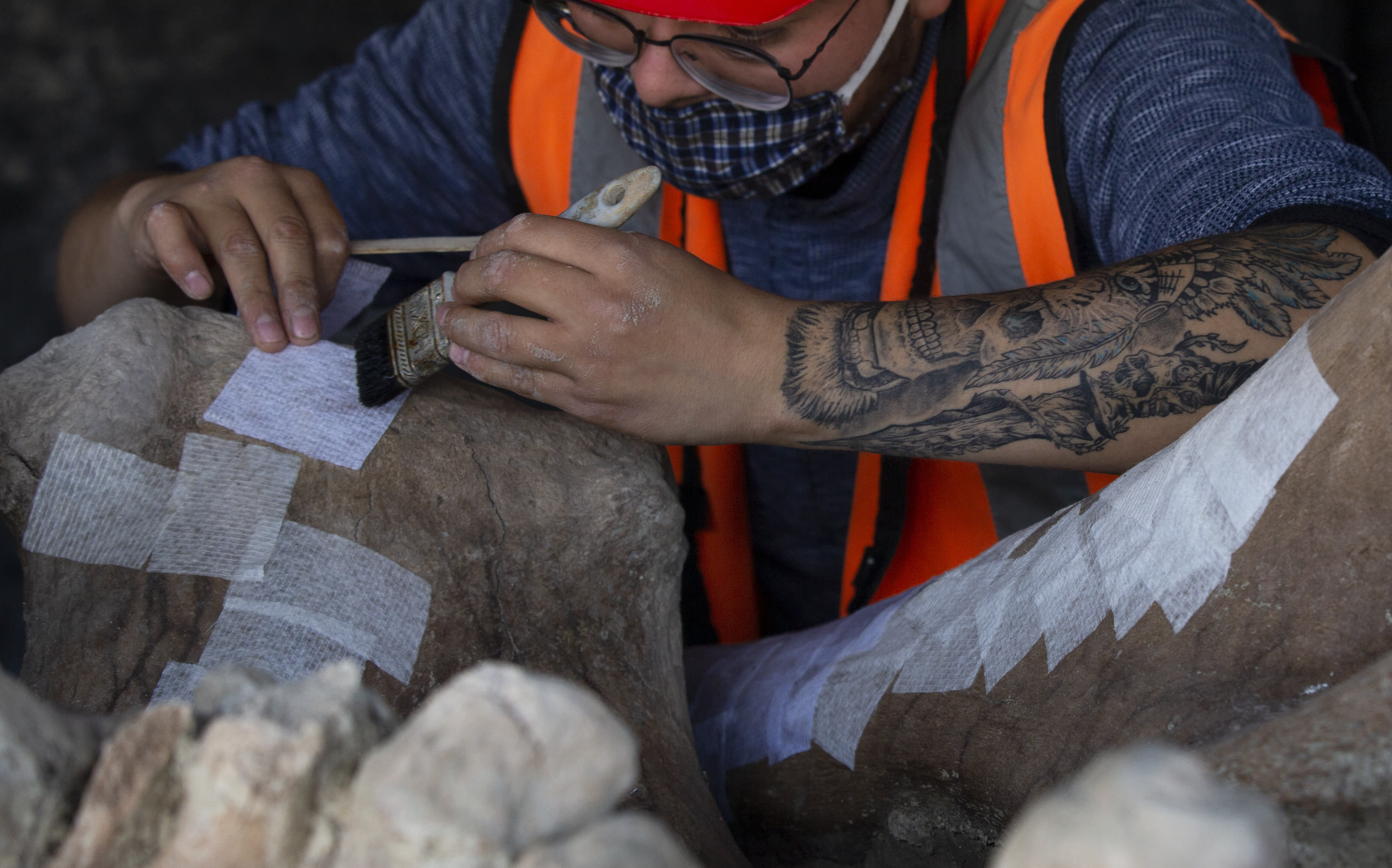 A paleontologist works to preserve the skeleton of a mammoth that was discovered at the construction site of Mexico City's new airport in the Santa Lucia military base, Mexico, Thursday, Sept. 3, 2020. The paleontologists are busy digging up and preserving the skeletons of mammoths, camels, horses, and bison as machinery and workers are busy with the construction of the Felipe Angeles International Airport by order of President Andres Manuel Lopez Obrador. (AP Photo/Marco Ugarte)