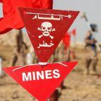 South African, European demining experts killed in Yemen