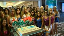 Miami Dolphins Cheerleading Squad Unveiled
