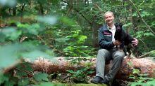 Forstamt: Katja Kammer ist die Hüterin des Grunewalds