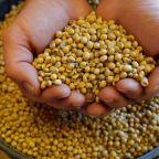 Impact of tariffs on America's soybean farmers