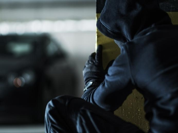 Another vehicle was reported stolen in New Canaan on Friday, bringing the total number of vehicle thefts in town to 21 this year.