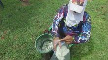 Cocaïne et financement de la guerilla en Colombie, Enquête Exclusive dimanche à 23:00 sur M6