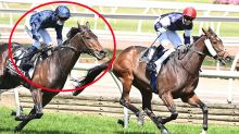 'What a circus': Uproar over 'terrible' twist in Melbourne Cup furore