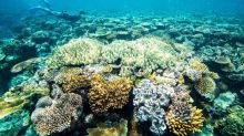 Qld launches floating Reef ranger station