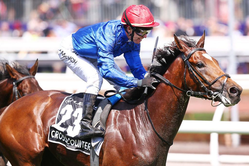 Melbourne Cup: Everything you need to know for race day