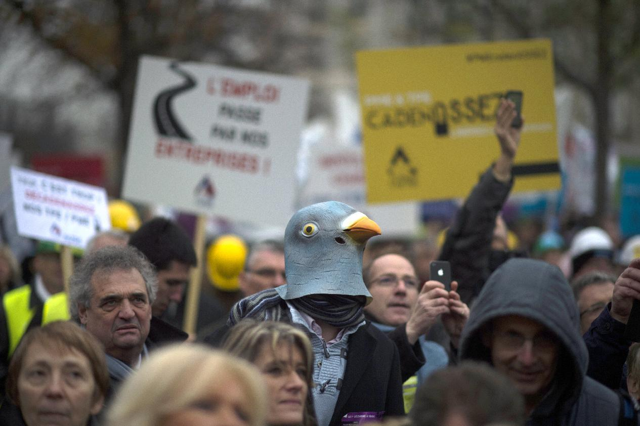 A protester wearing a pigeon mask takes part in a protest organised by business owners in Paris against hefty taxes, charges and stifling regulations they say are driving their firms into the ground on December 1, 2014 (AFP Photo/Martin Bureau)
