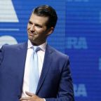 Donald Trump Jr met Gulf states emissary offering election help – report