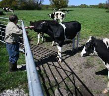 Australia trade deal will not hit UK farmers, says Liz Truss