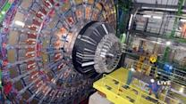 Bored Scientists Now Just Sticking Random Things Into Large Hadron Collider