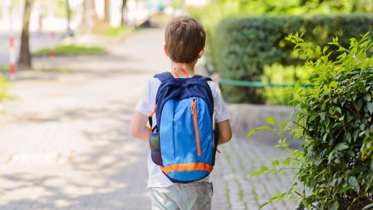 Utah legalizes controversial 'free-range parenting'