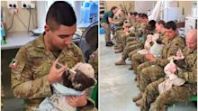 Australian soldiers caring for rescued koalas