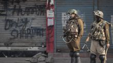 Kashmir shuts down to protest India's new land laws