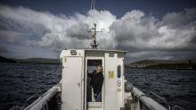 Fungie, el delfín perdido de Irlanda, 'va con la marea'