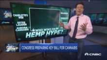 Congress preparing a key bill for cannabis that could be ...